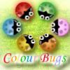 Colour Bug ..